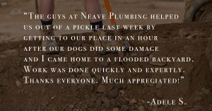 Plumbing review, happy customer, emergency plumbing